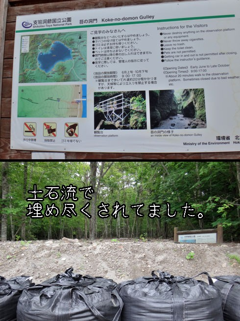 埋もれた苔の洞門