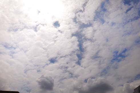微妙な雲行きでした。