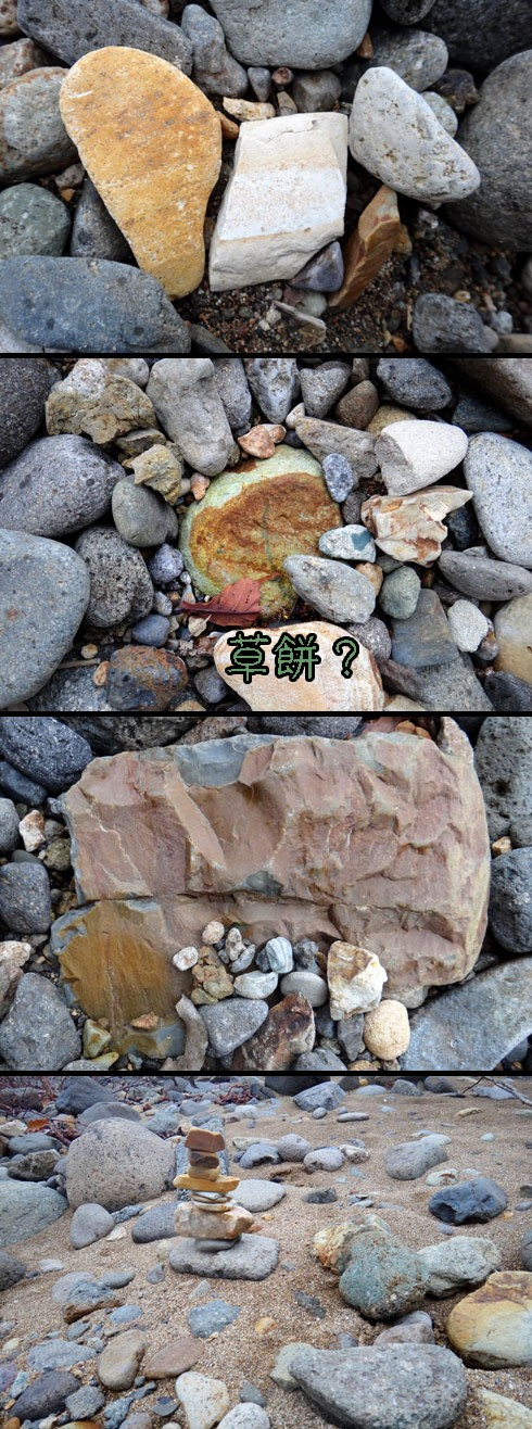 転がってる石は彩り豊かです。