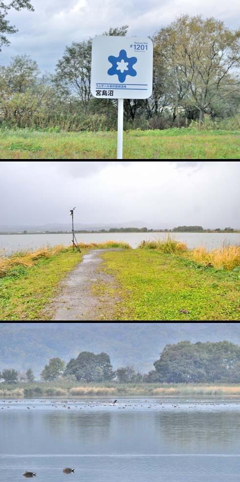 宮島沼って、んなところです。