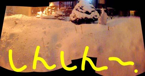 何時止むとも知れぬ雪です。