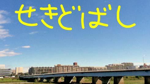 そん時は、橋が長く感じられんかったです。