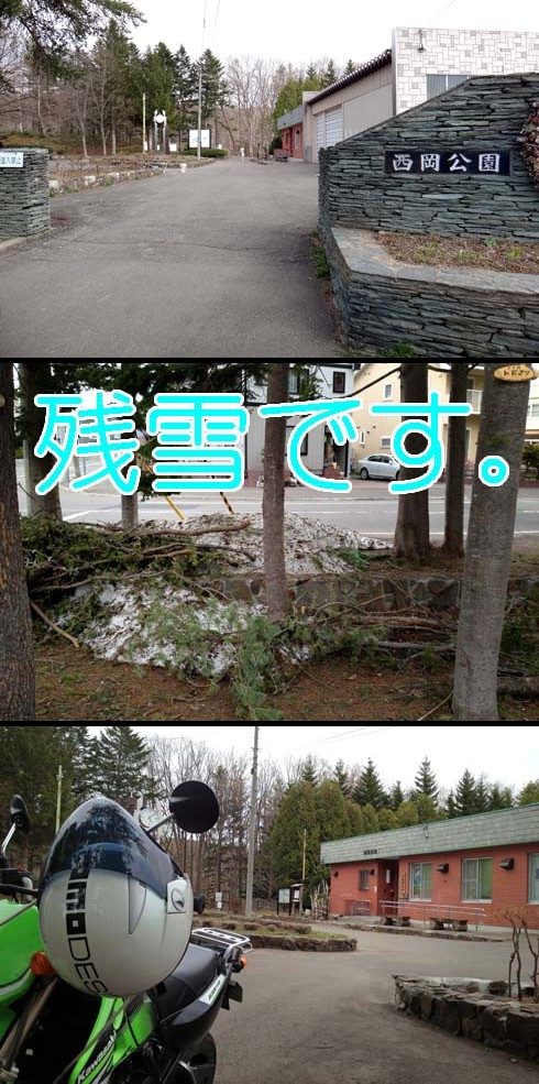 西岡公園までやって来ました。