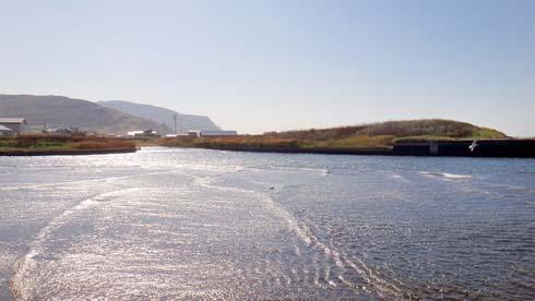 結構、川の内側まで波が押し寄せてます。