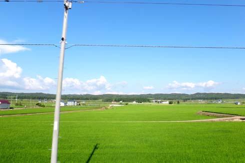 稲作中心です。