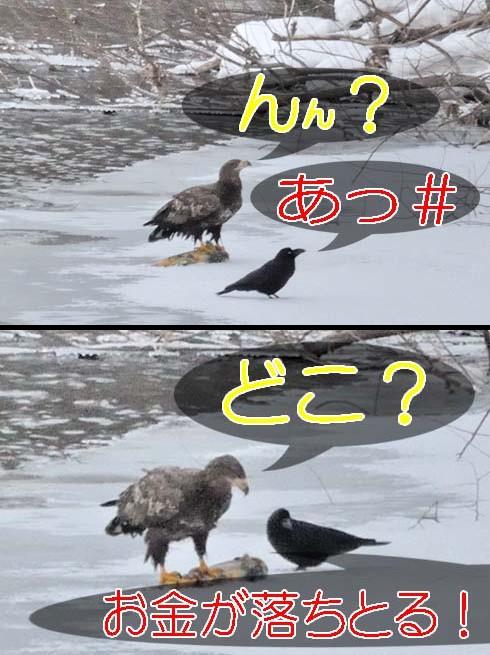 持ち逃げしたいのか(?_?)