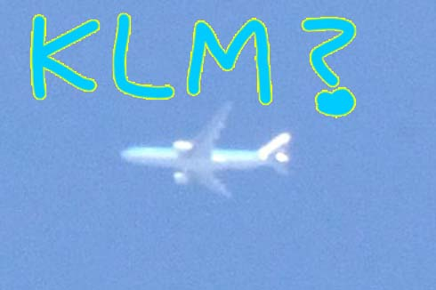 KLMで良い?