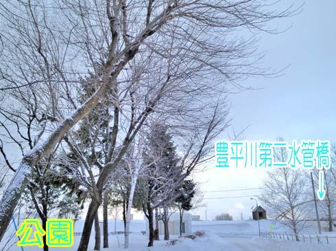 いかにも冬らしー空です。