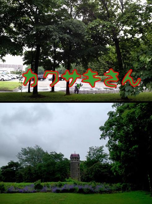 百合が原公園です。